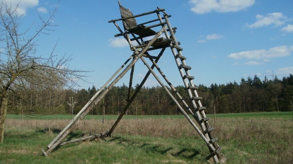 How to Build a Ladder Stand for Deer Hunting