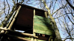 How to Build a Treestand for Deer Hunting